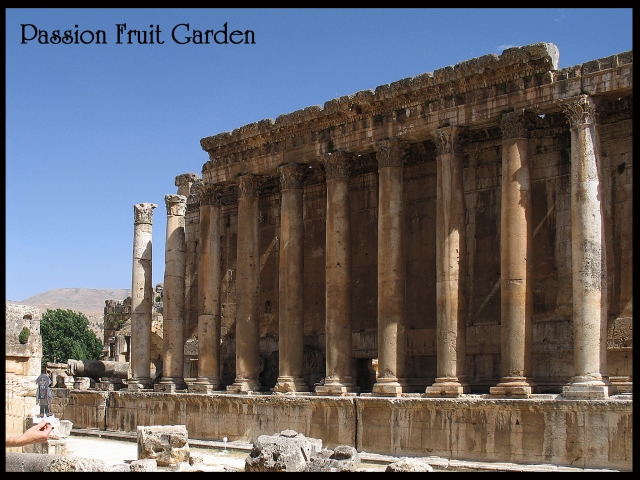 IMG_4338 Baalbeck Ruth copy